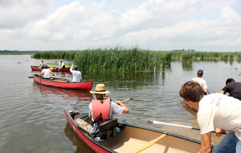 Participants head out onto Hennepin & Hopper Lakes as part of the general aquatic survey. Photo by Beth Botts.