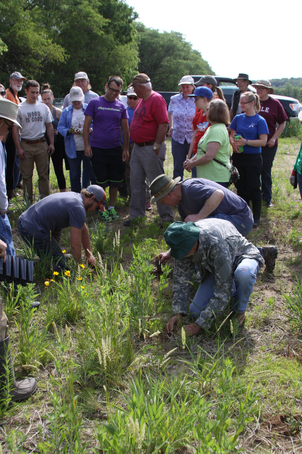 Volunteers get a demonstration on how to plant plugs, and practice putting a few into the ground.