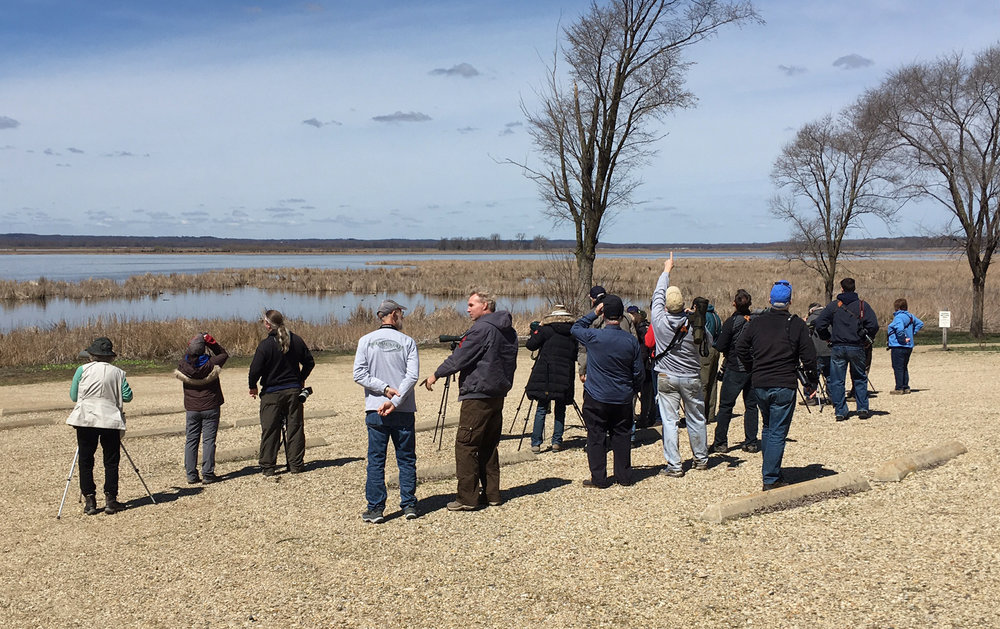 The viewing platform will enhance birding at the Dixon Refuge. Visitors and groups currently have to use the boat launch parking lot to get good views of Hennepin & Hopper Lakes.