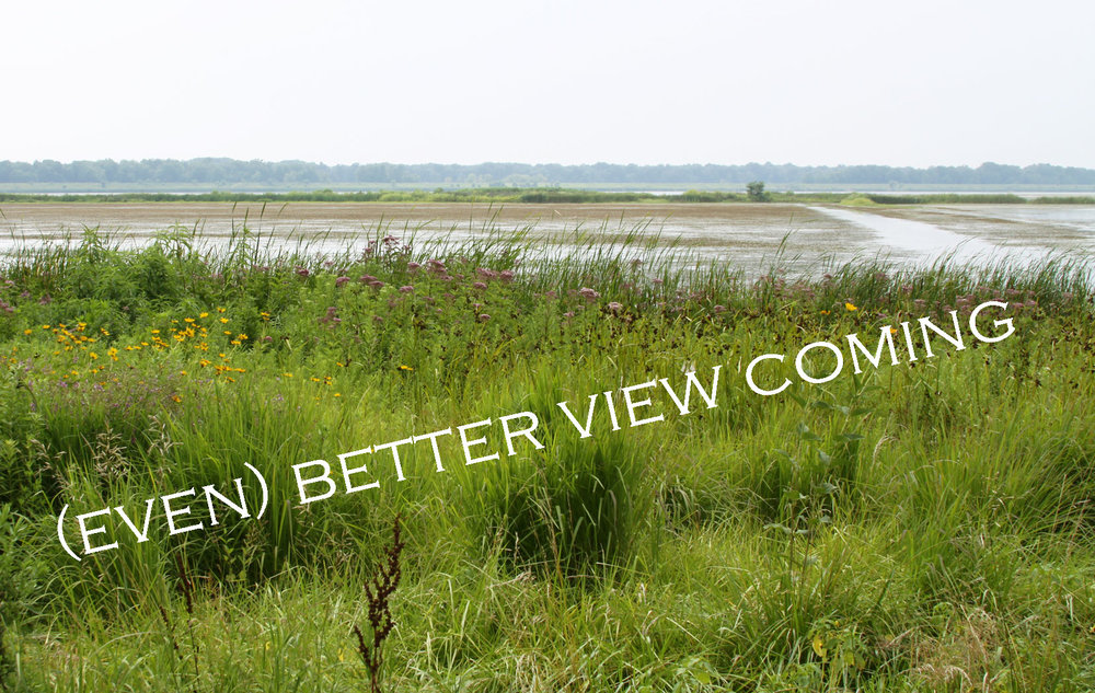 Better-view-coming-for-web.jpg