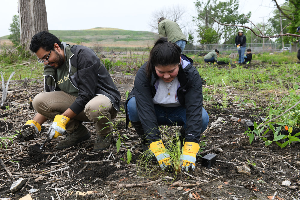 Last spring's biggest plug-planting volunteer day brought more than 90 people out to Indian Ridge Marsh and inspired this year's expanded schedule of community opportunities. Photo by Gary Sullivan/TWI .