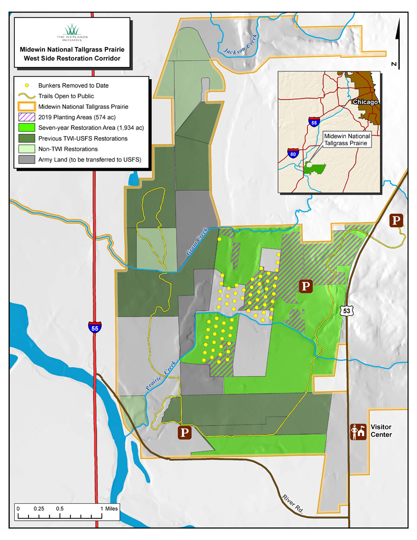 A map of the seven-year restoration area (in bright green) showing new planting areas for 2019 (cross-hatch) and ammunition bunkers that the Forest Service has removed (yellow dots). Map by Jim Monchak/TWI .