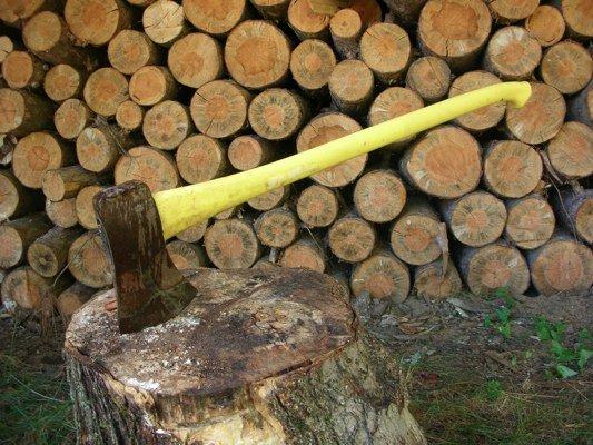 axe splitting wood.jpg