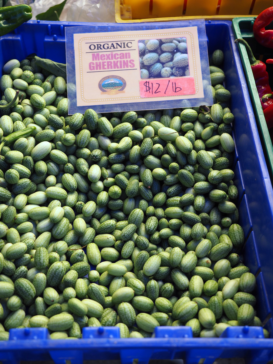 These Mexican Gherkins are similar to a cucumber