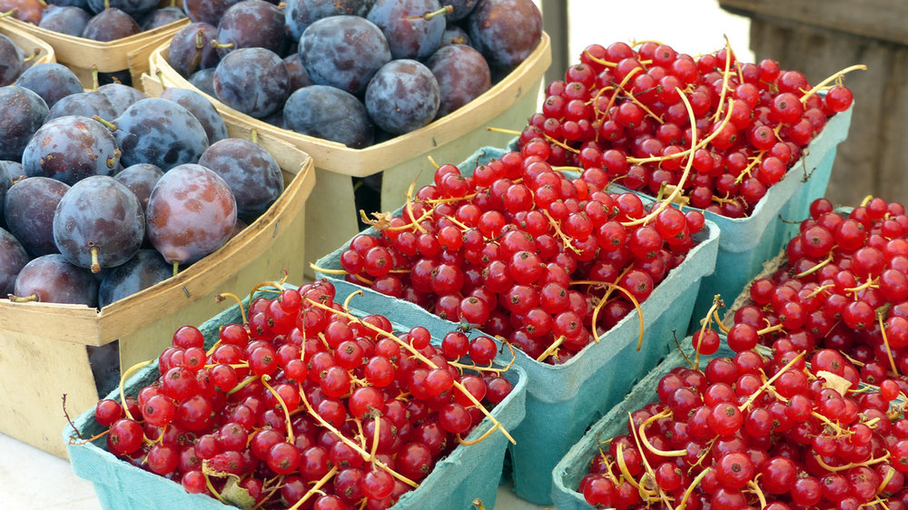 Plums and currants at the  market in Hudson, NY