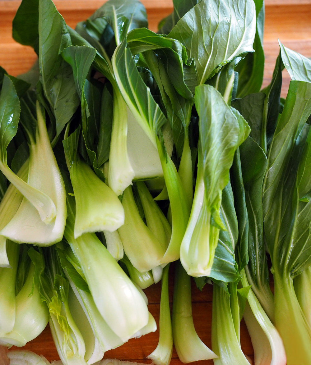 I'm not usually a big fan of bok choy, but this fresh and tender and tossed with noodles, that's another story.