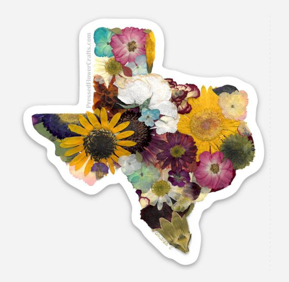 Texas Sticker by  Designs by Andrea
