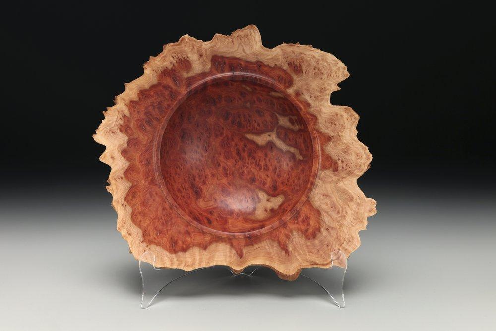 red mallee eucalyptus burl