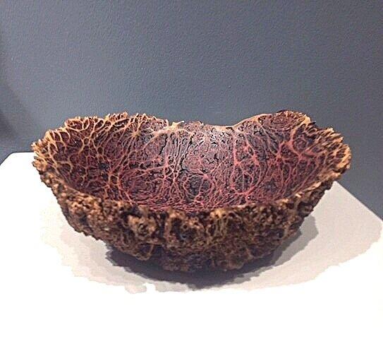 vasticola eucalyptus burl