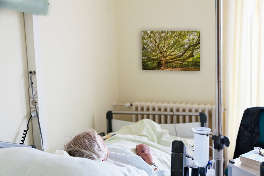 Patient Room 2 (2048).jpg