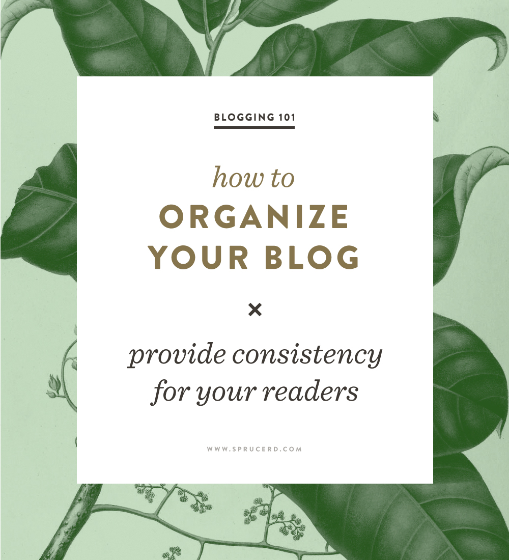 Blog: How To Organize Your Blog
