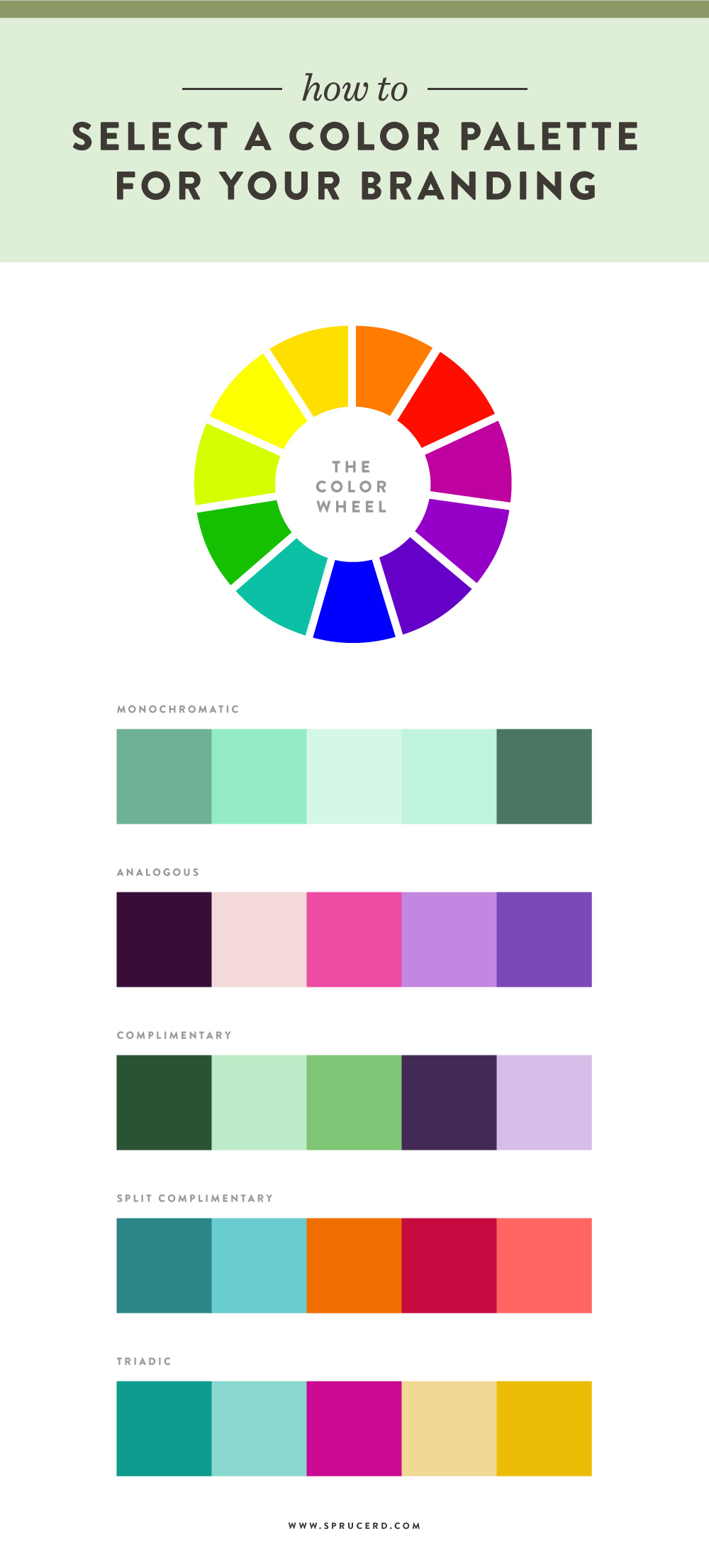How to select a color palette for your branding — Spruce Rd.