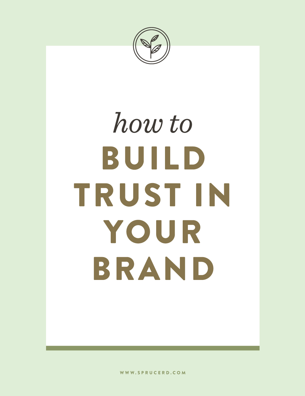How to build trust in your brand — Spruce Rd.