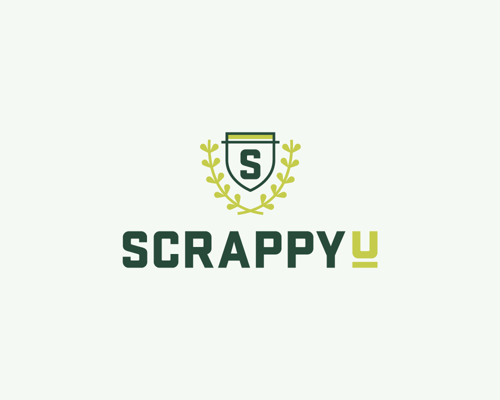 Scrappy U Brand identity, illustration, sales page design view project
