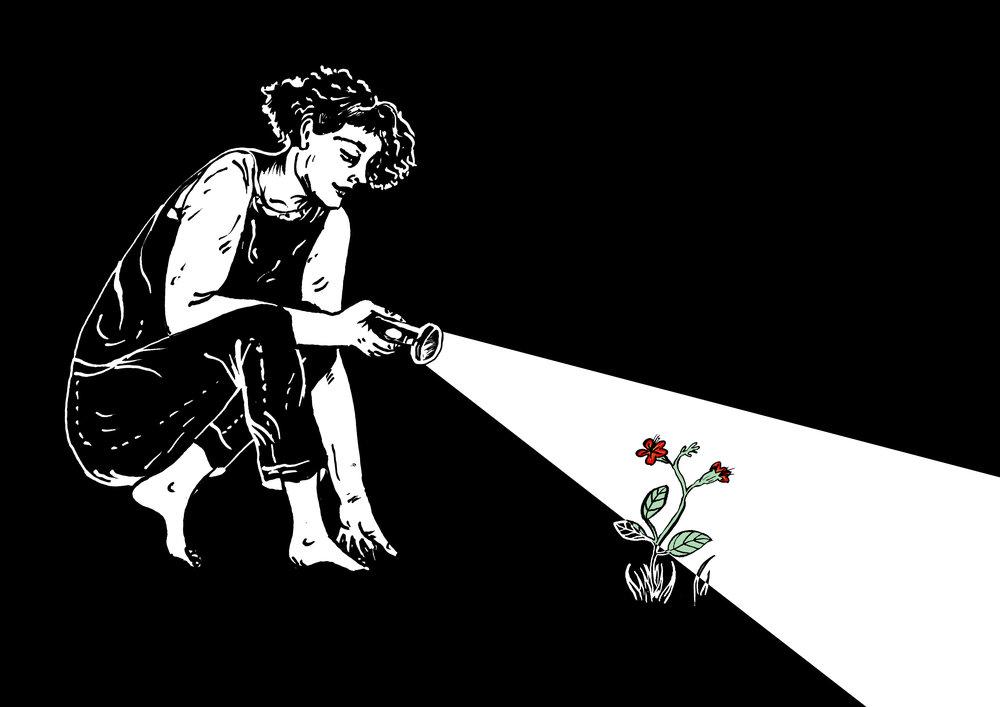 Illustration by: Ella Strickland de Souza