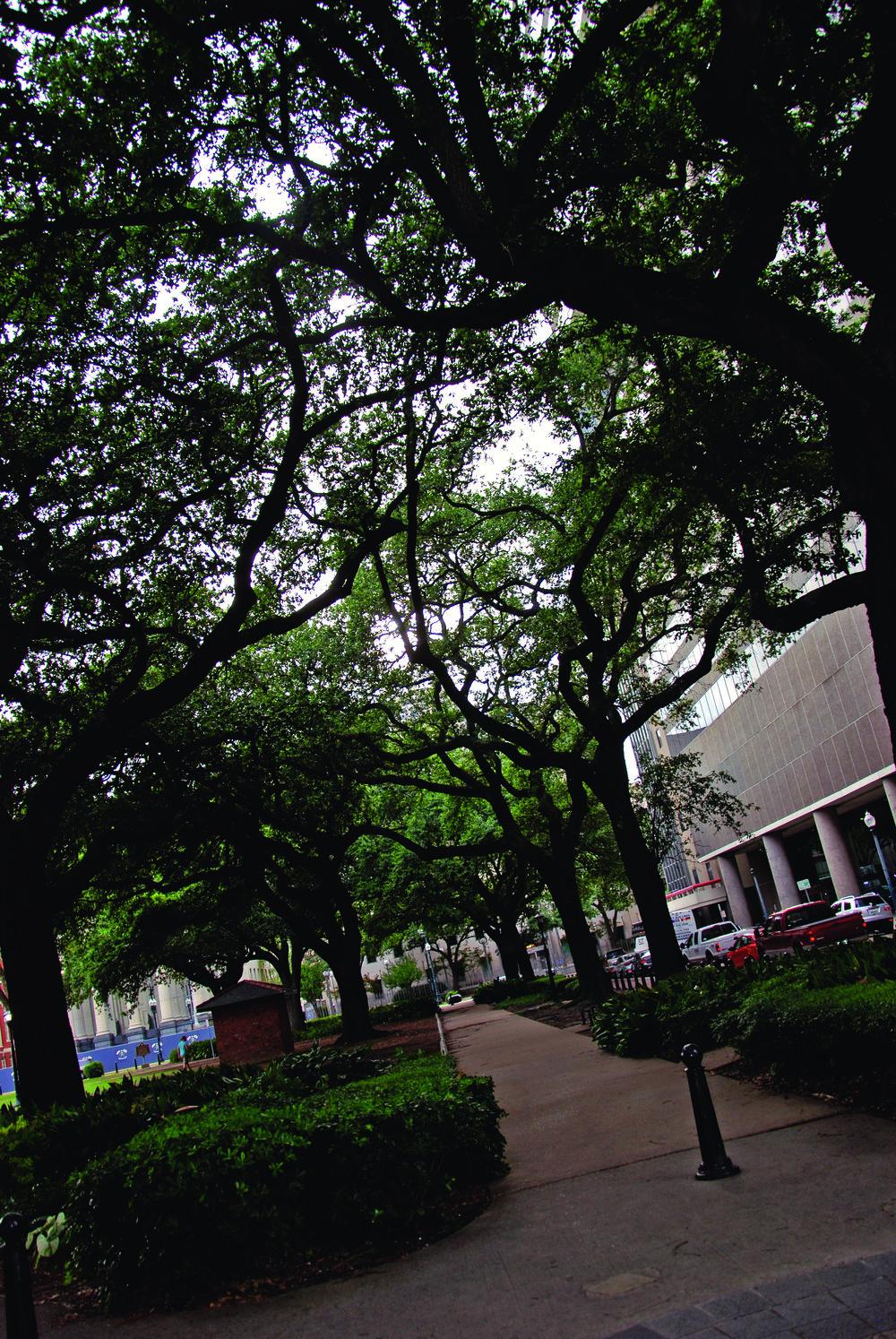 New Orleans 026.JPG