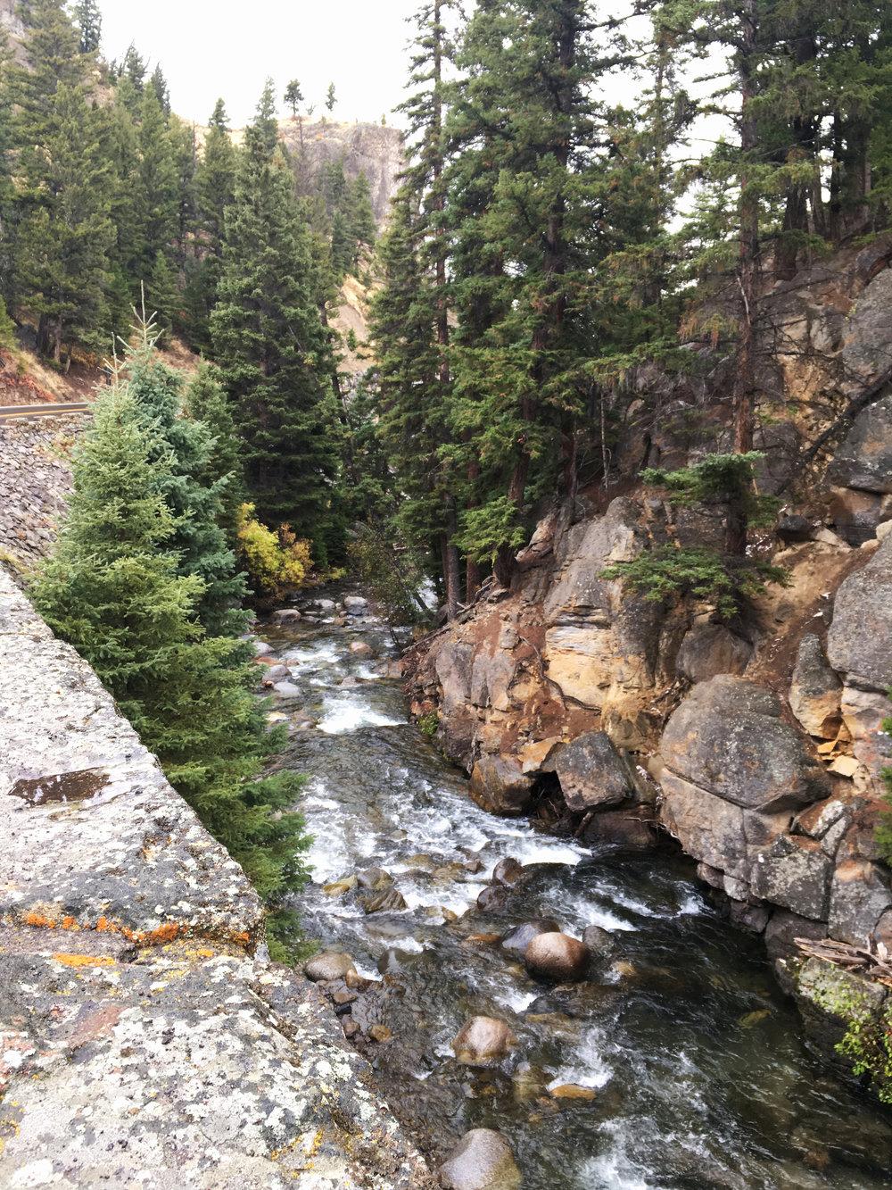 Yellowstone B 008.jpg