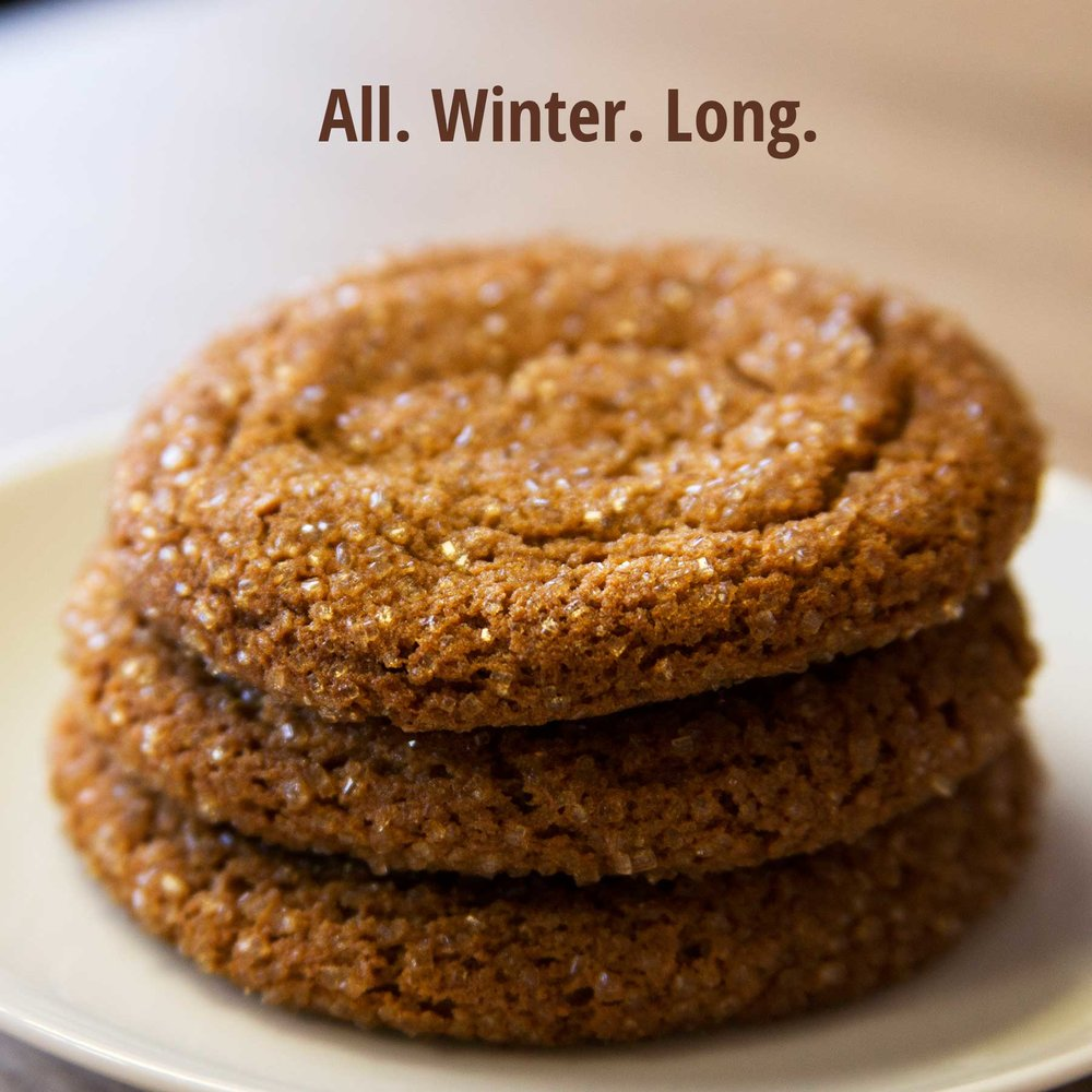 This  is a post featuring their Molasses Cookie, which is a new, seasonal cookie that became an instant favorite. It is only available during winter. -