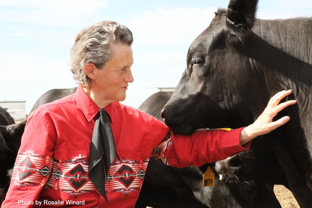 Dr. Temple Grandin // Photo by Rosalie Winard
