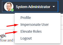 UI16 Impersonate & Elevate Roles