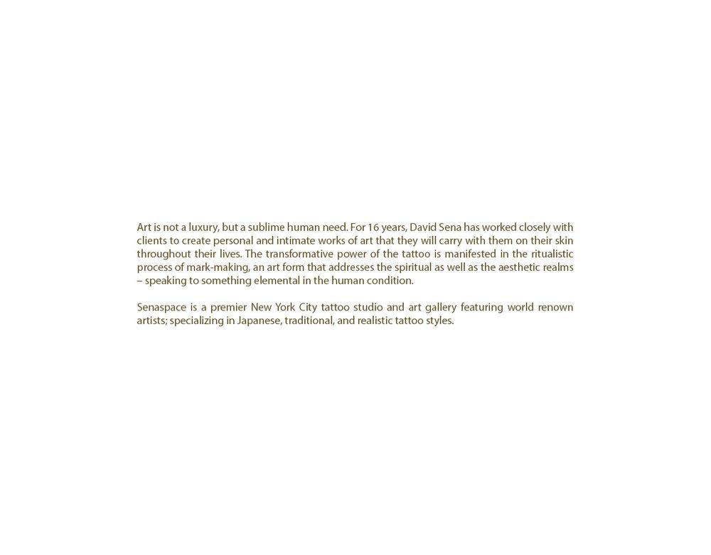 Senaspace Text pdf.jpg