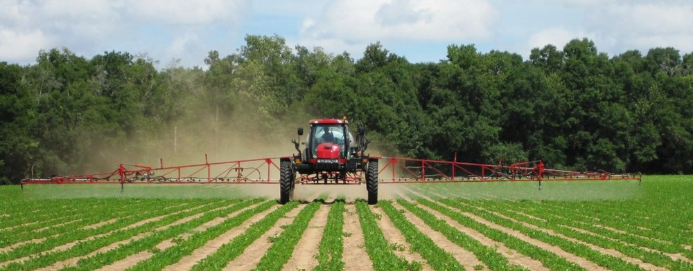 Tractor Spraying Vegetables