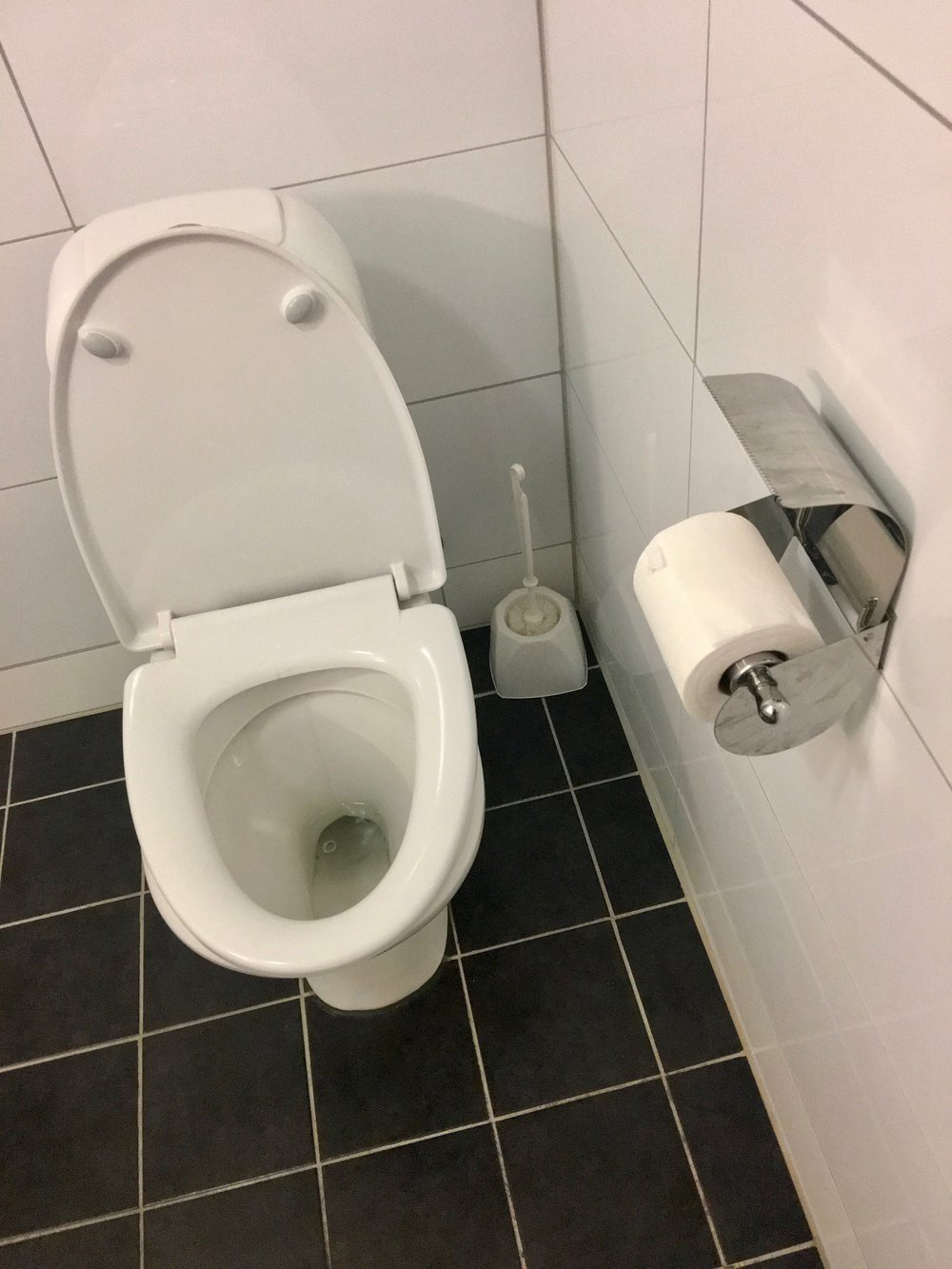 Toilet,_toilet_paper,_toilet_brush,_etc._in_a_bathroom_in_small_hotel_in_Tysnes,_Hordaland,_Norway_2018-03-18_C._Also_wall_and_floor_tiles.jpg