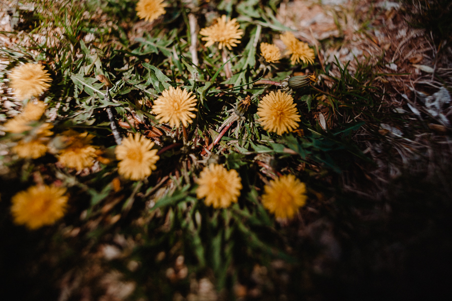 FloristryCamp-283.jpg