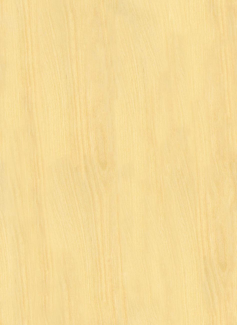 23_maple light wood fine texture-seamless.jpg