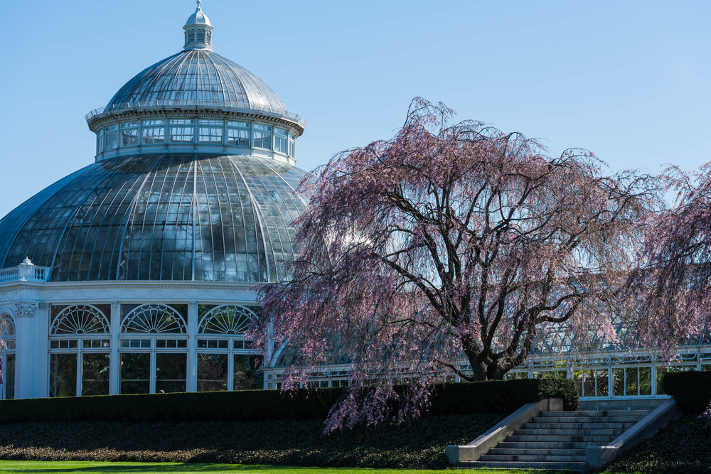 NYC Botanical Gardens Haupt Conservatory