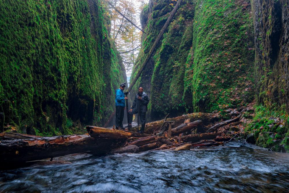 The Oneonta Gorge, Oregon