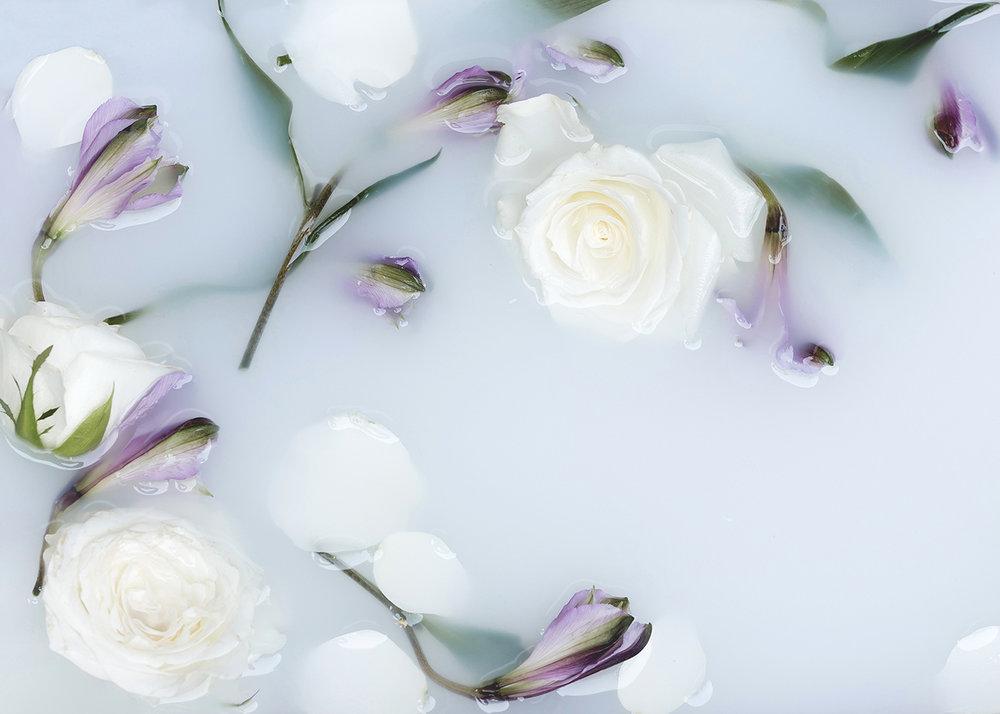 12+Pisces_July+Florascopes_Garden+Collage_Andreana+Bitsis-3.jpg