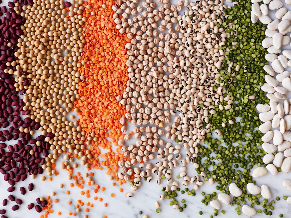 20160719_DrJulia_Beans-Legumes012.jpg