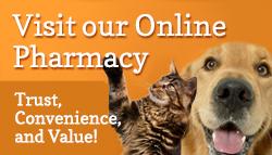 Visit-Pharmacy-Banner.jpg