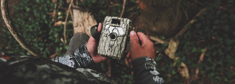 Our latest post...  SHIFTING DEER, SHIFTING CAMERAS