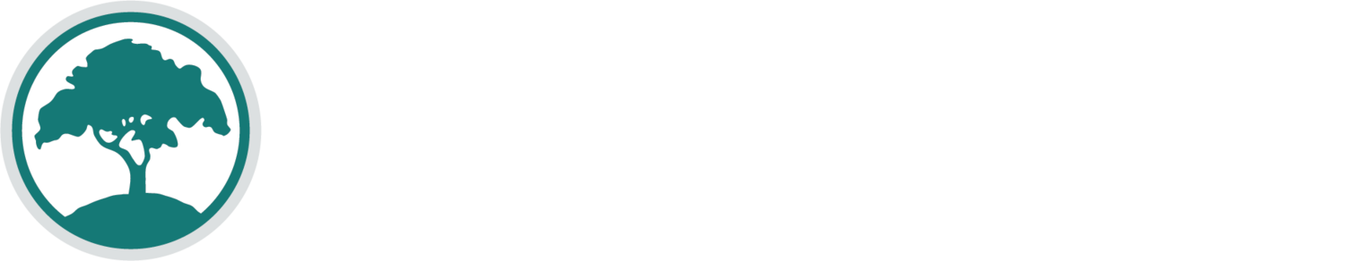 The BALSA Foundation