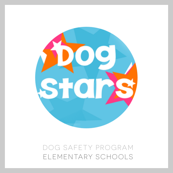doggipal dog stars
