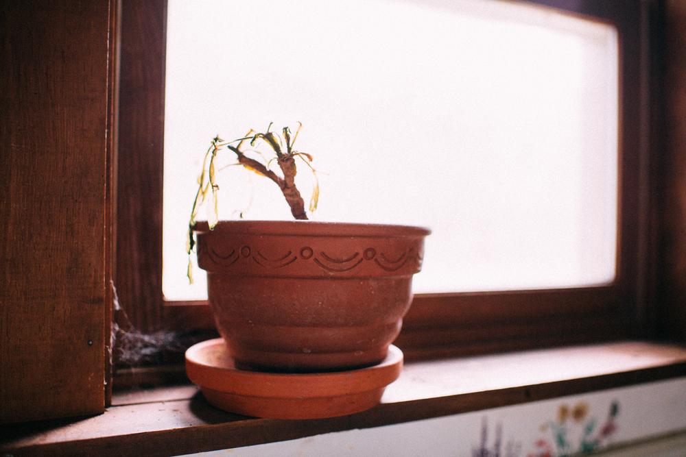 ashleyglass14.jpg