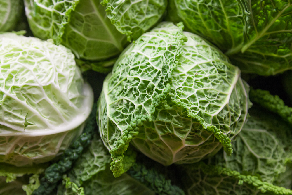 Organic Cabbage from Mana Foods Produce Department