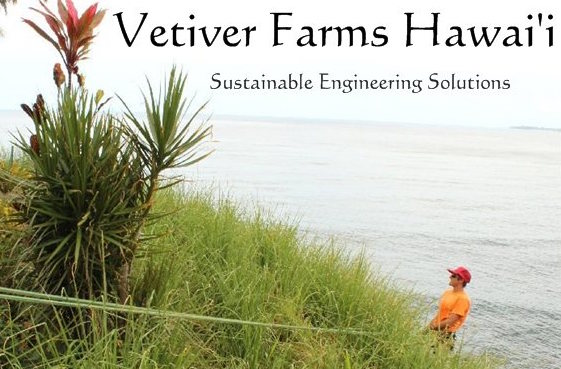 vetiver farms_hawaii_sustainable_engineering_solutions