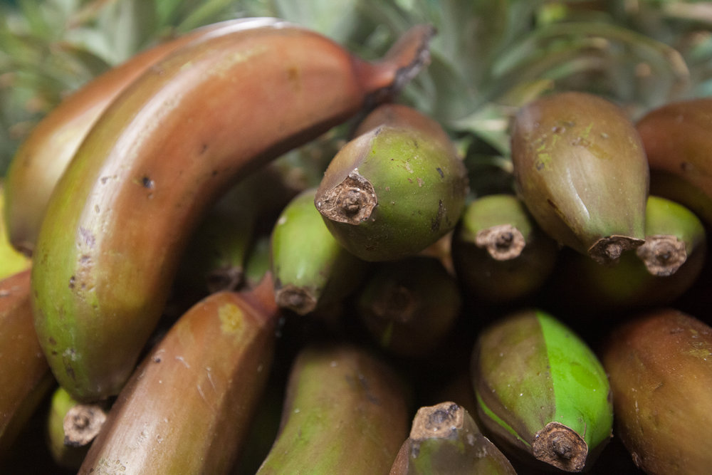 red-bananas-local-organic-produce-department-mana-foods copy.jpg