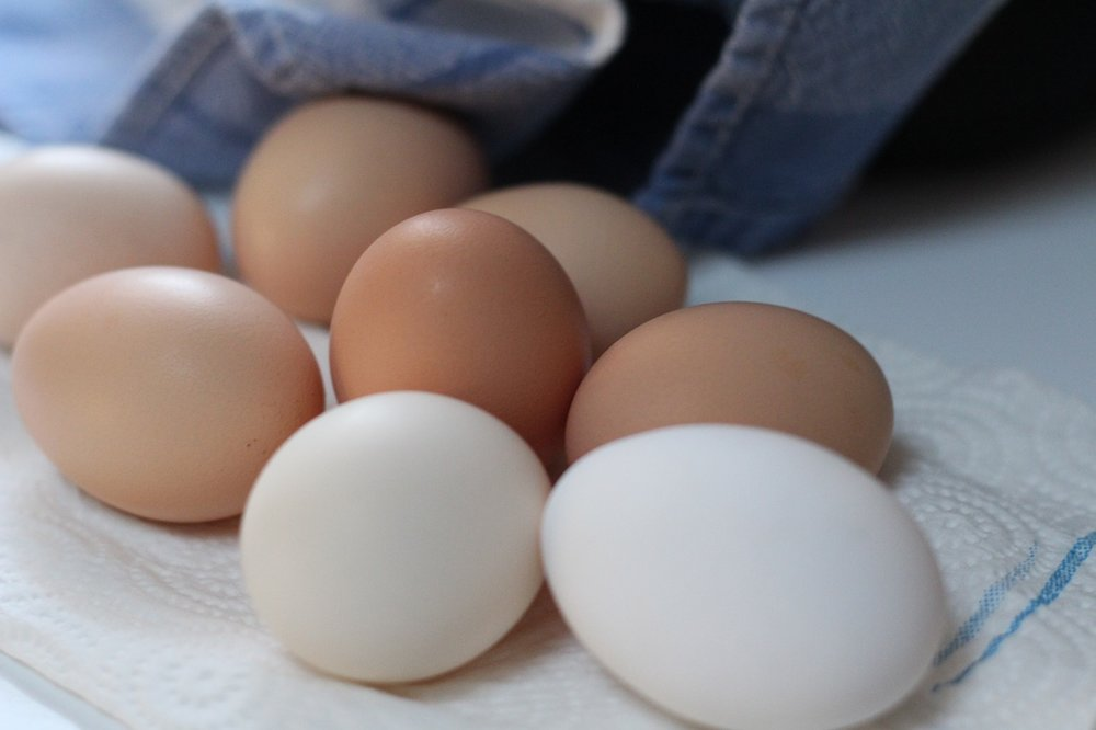 Food Brown Eggs Chicken Eggs Fresh Eggs Eggs