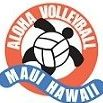 aloha volleyball association's logo