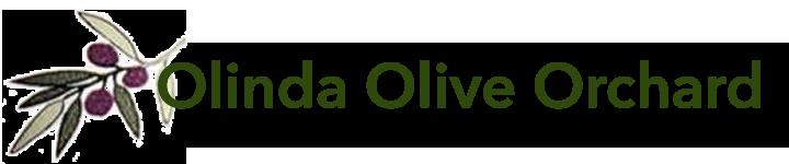olinda_olive_orchard_logo-copy-2.png