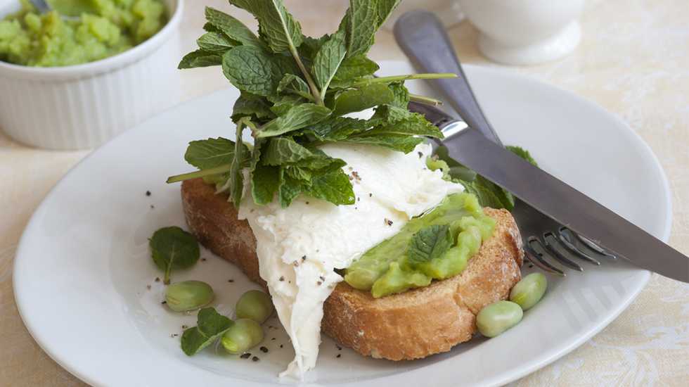burrata & fava bean bruschetta