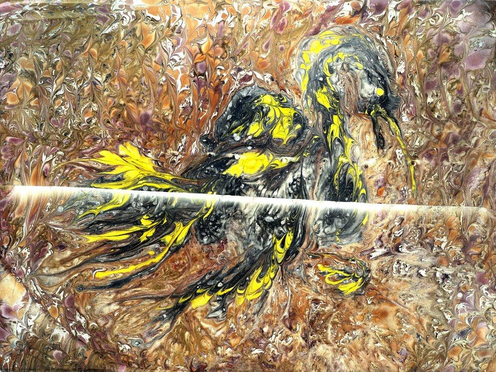 bird006.jpg