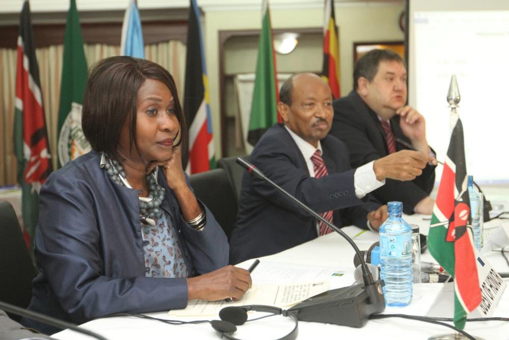 Professor Judi Wakhungu, the Cabinet Secretary (Minister) for Environment, Natural Resources and Regional Development Authorities of Kenya