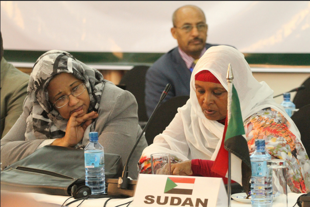 Ministers in charge of environment, or their representatives, attended from all IGAD Member States