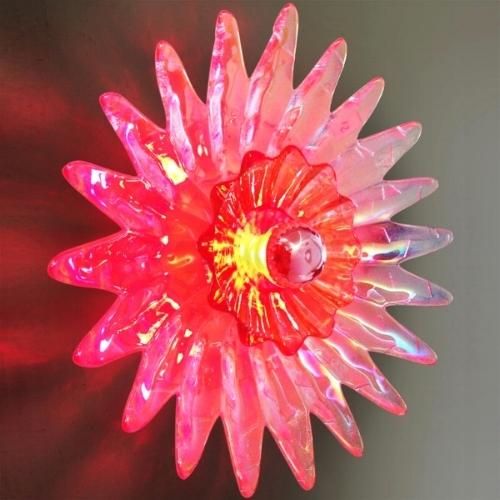 Sunflower lit