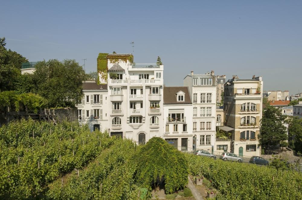 Musée de Montmartre - Jardins Renoir © Jean-Pierre Delagarde